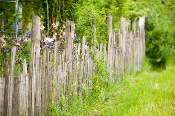 Gartenzaun Holzbau Molsen